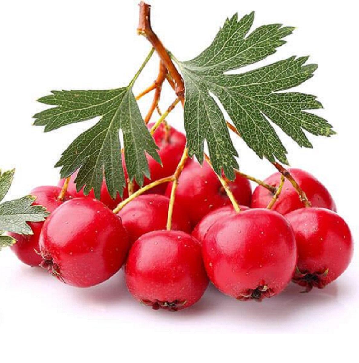 Nature's Sunshine Hawthorn Berries 450mg 100c_media-02